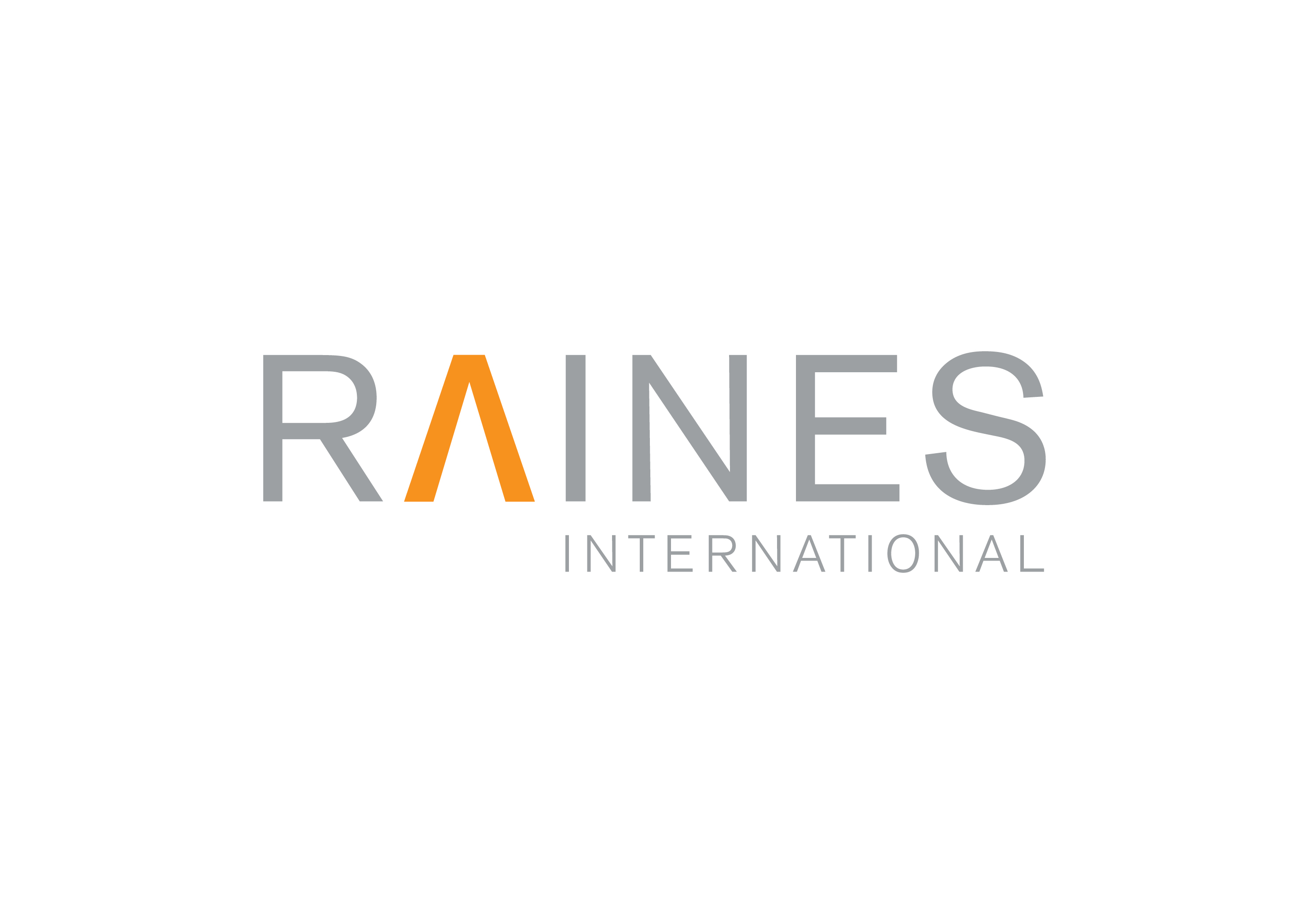 Raines International Brand Identity