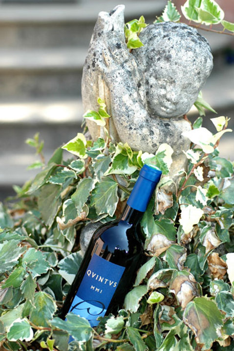 6 x Bottles of Domaine de Gourgazaud Quintus Cuvée Exceptionnelle 2014