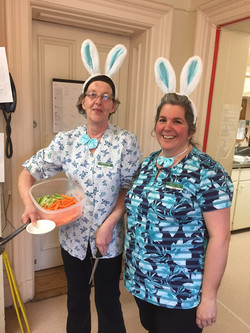 Easter Bunnies in the kitchen