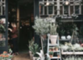 flower-shop-plants-pots-880463.jpg