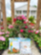 Rose Mix.jpg