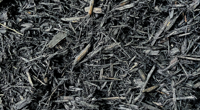Black Colored Mulch
