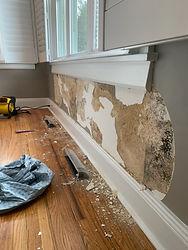 plaster mold damage.jpg