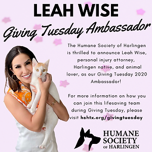 Giving Tuesday Ambassador.png