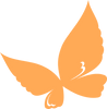 orange-butterfly-hi_edited.png