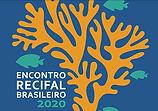 logo brazil.PNG