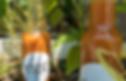 Screen Shot 2018-10-15 at 12.48.07 PM_ed