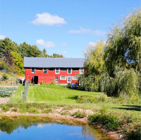 Goatfell Farm