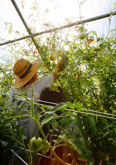 Farming the Greenhouse