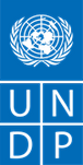 YAP_UNDP_Logo_特別講師.png