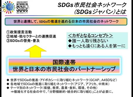【YAPレポート Vol.14】特別講義6〜SDGs Japanの取り組みから考える市民社会とアドボカシー〜