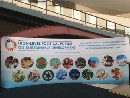 【HLPFって?SDGs国際会議@国連】HLPFレポートVol.0