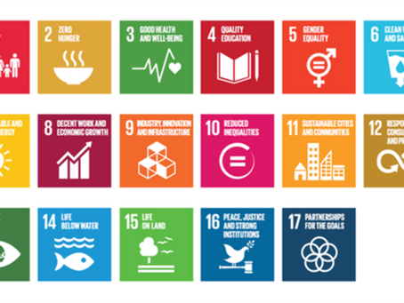 "JYPS オンライン勉強会 #1 ""Progressions of G20 on SDGs"" (2)"