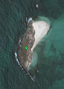 Favorite island.PNG