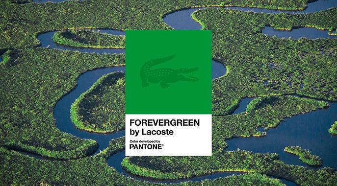 Forevergreen-BE-1.jpg