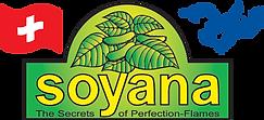 Soyana-logo-web.png