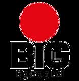 biggrup-logo.png