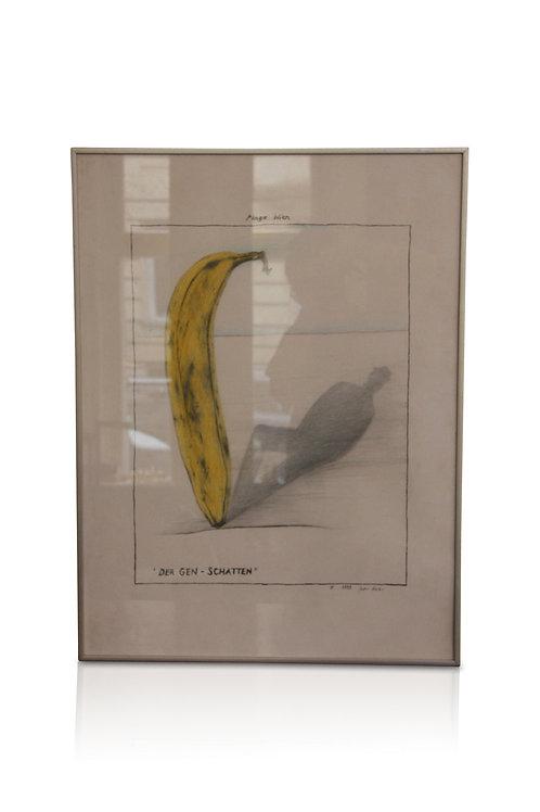 """""""Der Gen-Schatten"""" Zeichnung von Peter Hasler"""