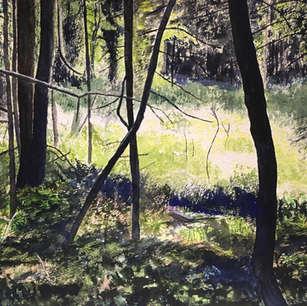 Forest Glade, De Grassi Point