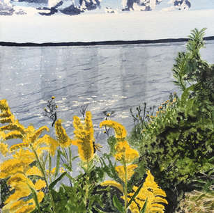 Goldenrod, De Grassi Point, Lake Simcoe