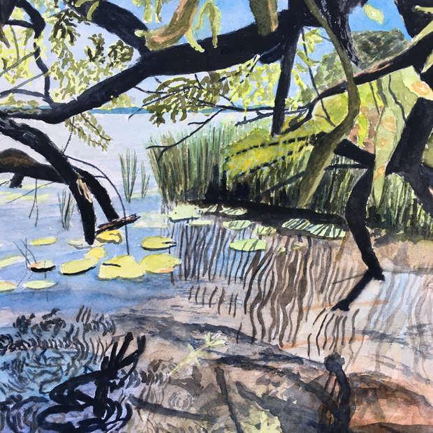 Under the Willow, De Grassi Point