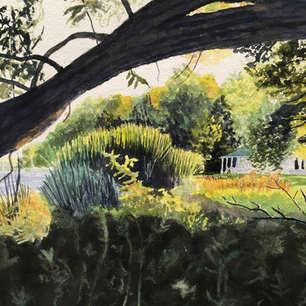 Summer through the Bough,      De Grassi Point