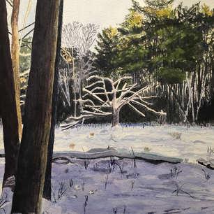 Meadow in Winter No. 2, De Grassi Point