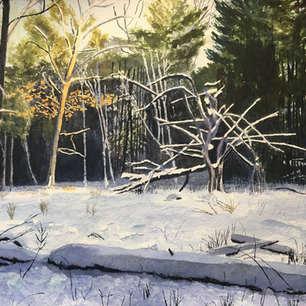 Meadow in Winter No. 1, De Grassi Point