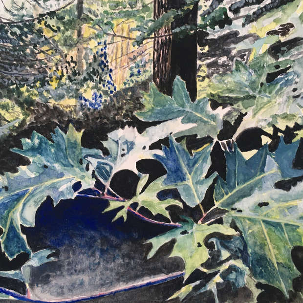 Oak Leaves, De Grassi Point
