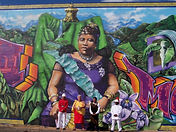 Wisdom Circles Hawaii community and non-profit program develpment