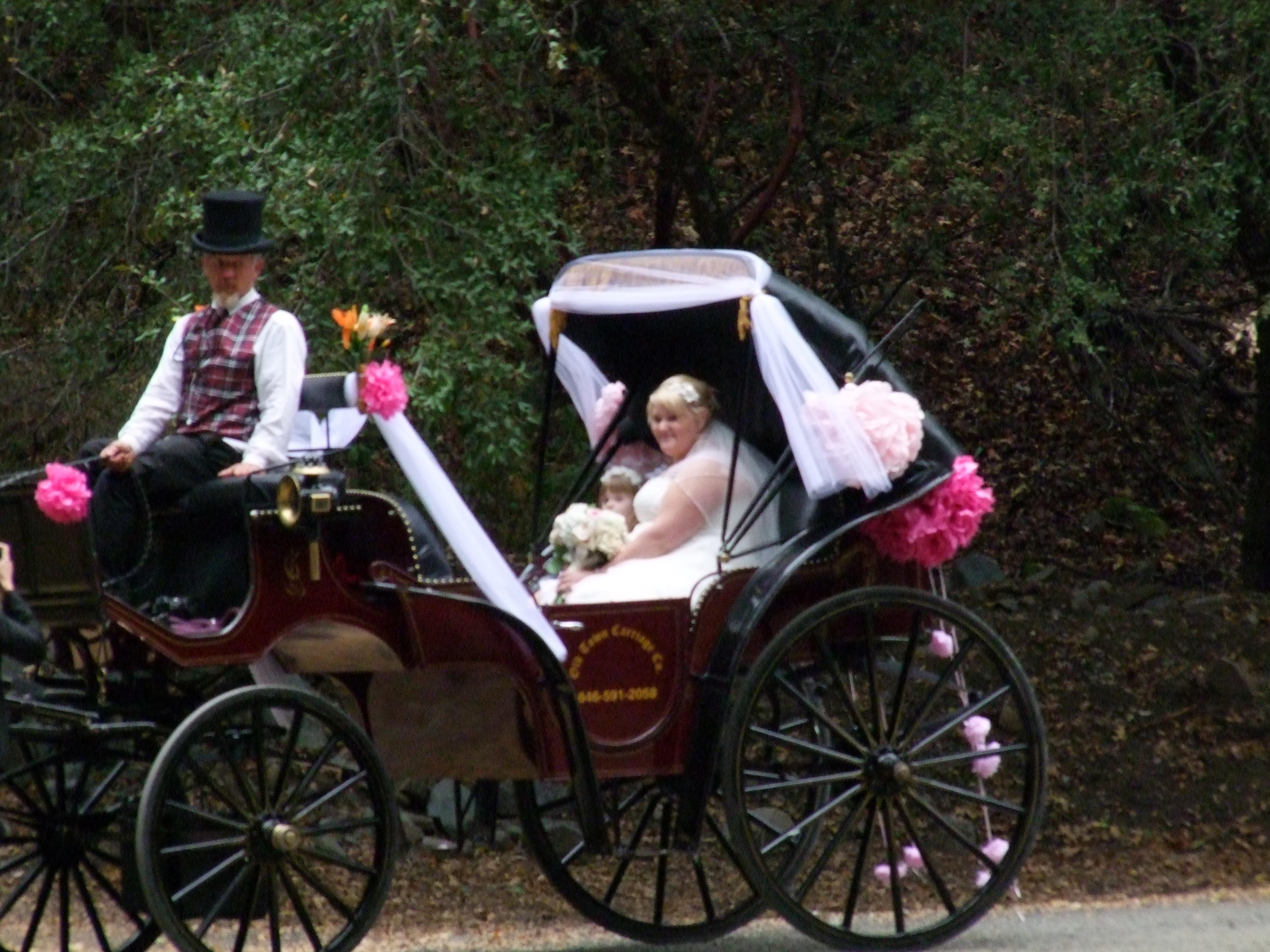 Wedding in Piercy