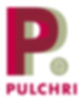 Pulchri Studio