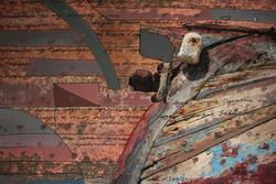 Boat # 364