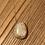 Thumbnail: Corail Fossile  - toutes les pierres sont différentes