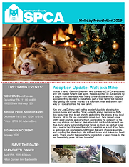 Holiday Newsletter 2019.png