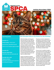2020 Holiday Newsletter pg 1 png.png