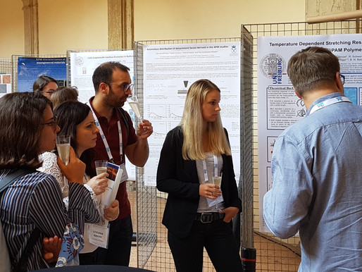 Meet our best poster and talk presenters of previous NSFE editions!