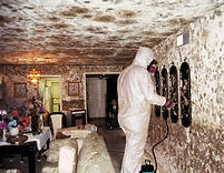 mold industrial hygiene safety consulting chattanooga spartanburg