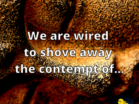 Wired to Shove Away Contempt