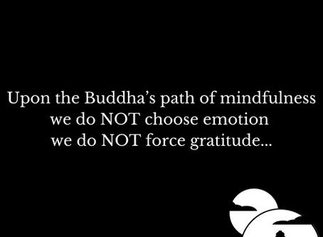 Do NOT Force Gratitude...