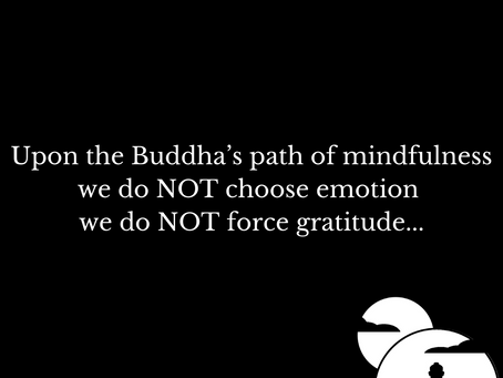 Do NOT Force Gratitude...