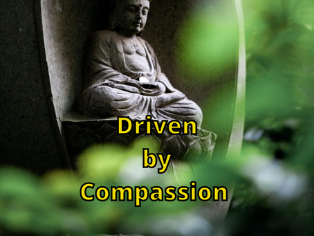 Driven by Compassion!