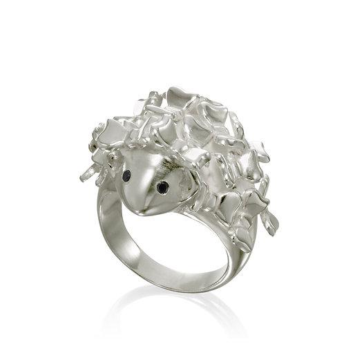 anel maria lola
