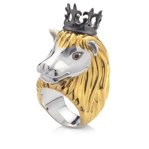 anel leo