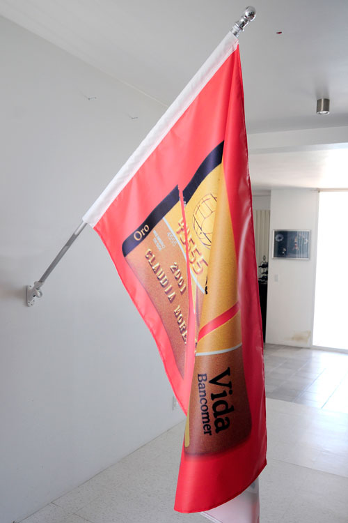 Bandera Capitalista2