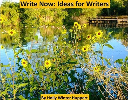 Book for Writers: Write Now: Ideas for Writers