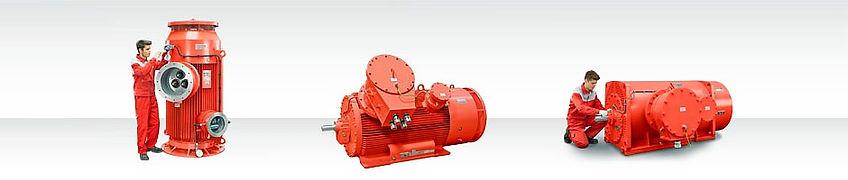 Produkte_Ex-Motoren_edited.jpg