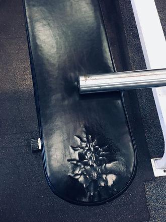 Weight Machine Uphostery .jpeg