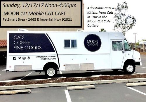 Second Chance: Moon-1st Mobile--Cat Café Returns December 17