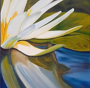 Beneath the water lily